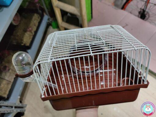 Lồng Hamster nhỏ màu nâu