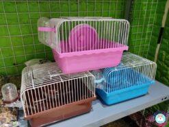 Lồng Hamster nhỏ ngũ sắc